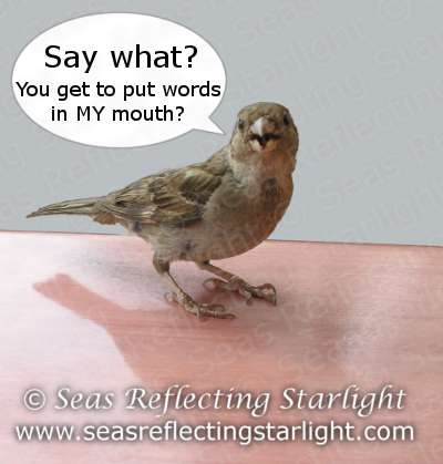 Chattering Sparrow by Seas Reflecting Starlight