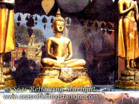 Wat Phrathat Doi Suthep Reflections by Seas Reflecting Starlight